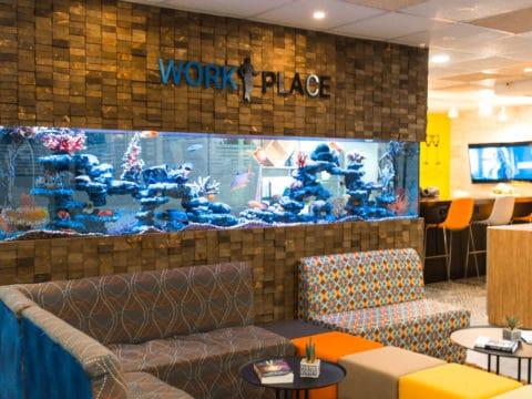 וורק-פלייס - Work-Place - חלל עבודה ברחובות