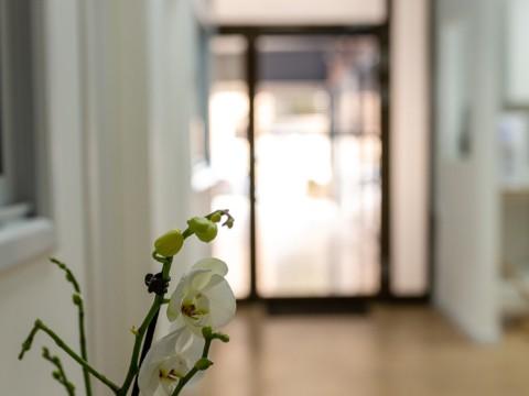 spacenter.co .il מעטפת מומחים ומטפלים בבית אחד Maatefet 10